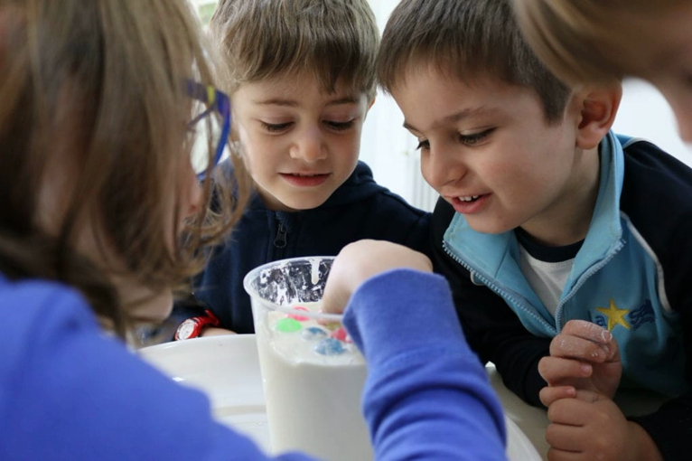 neurociencia educacion experimentacion